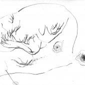 Graphisme sur papier Ingres - Février 2011 - 45 x 32,5 cm (1)
