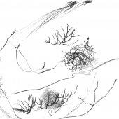 Graphisme sur papier Ingres - Février 2011 - 45 x 32,5 cm (4)