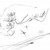 Graphisme sur papier Ingres - Février 2011 - 45 x 32,5 cm (6)