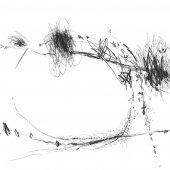 Graphisme sur papier Ingres - Février 2011 - 45 x 32,5 cm (7)