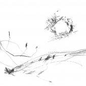 Graphisme sur papier Ingres - Février 2011 - 45 x 32,5 cm (9)