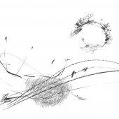 Graphisme sur papier Ingres - février 2011 - 45 x 32,5 cm (10)